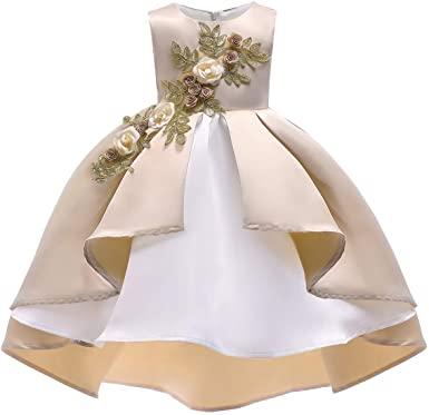 Amazon.com: AIMJCHLD 2-9 Years Flower Girls Dress Wedding .